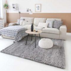 Licht-grijze Tapeso Hoogpolig vloerkleed shaggy Trend effen - lichtgrijs 300x400 cm