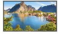 NEC Display Solutions NEC Display MultiSync E805 - 203.2 cm (80'') Klasse 60003929