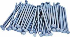 Zilveren Bakcivi Gegalvaniseerde Draadnagels / Spijkers 50x2,70mm - 100 Stuks - Platkop - Geruit