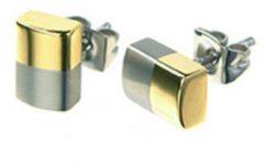 Zilveren Boccia Titanium 0509-03 Oorstekers - Titanium - Bicolor