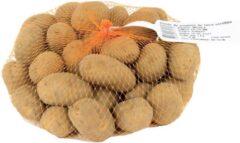 Baltus Bloembollen Aardappel Gloria (1 KG Vroeg)   Pootaardappel
