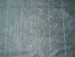 Nature anti worteldoek gronddoek zwart 2 x 5 m 100 g/m2