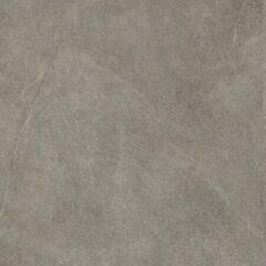 Grijze Jos. Disi Vloertegel 60x60cm 10mm vorstbestendig gerectificeerd Grey Mat 1259317