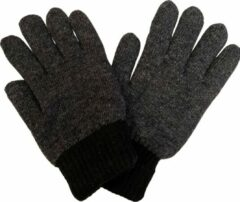 Fashionhouse Warme Winter Handschoenen | Excellente Kwaliteit |One Size | Grijs