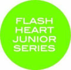 FLASH Hockey FLASH Heart hockeystick Jongens Zwart Oranje