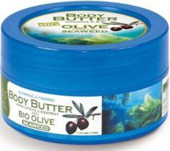 Pharmaid Natuurlijke voedende Body Butter op basis van griekse bio Olive Oil, vitamine A, E, en verouderings-ingrediënten met heerlijke aroma's van Seaweed - Athenas Treasures 200ml