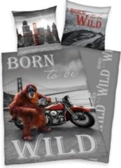 Herdings young collection Renforce-Kinder-Bettwäsche, 2-tlg., Born to be wild, 80x80/135x200 cm
