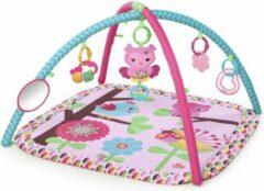 Roze Charming Chirps™ Activity Gym - Bright Starts