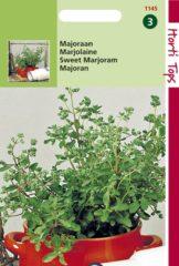 Hortitops Zaden - Majoraan