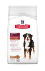 Hills Canine Adult Large Lam&Rijst 12 kg