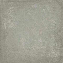 Baldocer Ceramica Baldocer Cerámica Vloer- en wandtegel Grafton Grey 80x80 cm Gerectificeerd betonlook Mat Grijs SW07310900-2