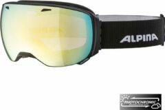 Alpina Big Horn QVM Photochromic Skibril - 2019 - Zwart | Categorie 2-3