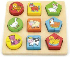 Viga Toys Geometrische Vormenpuzzel 20 X 20 Cm Hout 18 Stuks