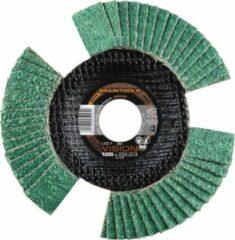 Lamellenslijpschijf LSZ F VISION Rhodius 207084 Diameter 115 mm Binnendiameter 22,23 mm Korreling 60 1 stuk(s)