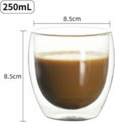 ECdesign Set van 2 dubbelwandige/thermische tassen/glazen 250 ml