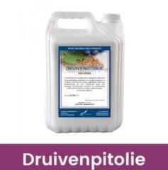 Claudius Cosmetics B.V Massageolie Druivenpitolie (100% Natuurlijk) - 5 liter