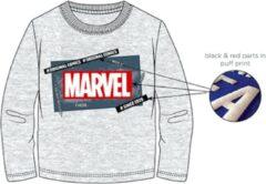 Marvel Comics t-shirt - grijs - Maat 116 / 6 jaar