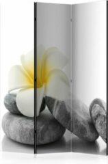 Grijze Kamerscherm - Scheidingswand - Vouwscherm - White Lotus [Room Dividers] 135x172 - Artgeist Vouwscherm