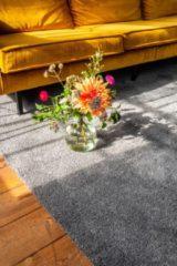 Antraciet-grijze Floor Robbie Antraciet 160x230