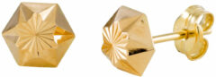 Gold Collection 14 Krt Gouden Oorbellen 6.0 mm Gediamanteerd 206.0461.06