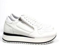 Red-Rag 76700 sneaker - wit / combi, ,41 / 7