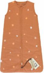 Roze Briljant Baby WINTER SLAAPZAK MAAT 110 SUNNY 35R/PINK