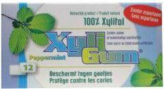 Xyligum Kauwgom Pepermunt (1 Pakje van 12 stk)