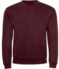 Paarse Sweater Sols SPIDER CITY MEN