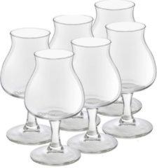 Royal Leerdam 12x speciaal bierglazen/tulpglazen transparant 250 ml Lund