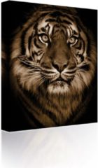 Blauwe Sound Art - Canvas + Bluetooth Speaker Tiger's Face (23 x 28cm)