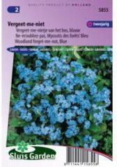 Sluis Garden Blauw vergeet-me-nietje van het bos bloemzaden – Vergeet-me-niet