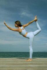 Lively collection Sportlegging-Yoga -Legging Fitness-High Waist-Legging-Gym Sports Wear-Yoga Legging-Baby Blauw-Small