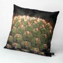 Groene HUGS Indoor 50x50 cactus