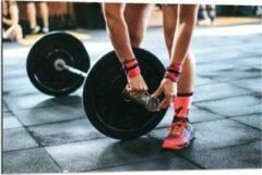 Roze KuijsFotoprint Dibond - Fitness Gewichtheffen - 90x60cm Foto op Aluminium (Met Ophangsysteem)