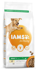 IAMS Adult Large Breed Dog - Chicken - 5 kg