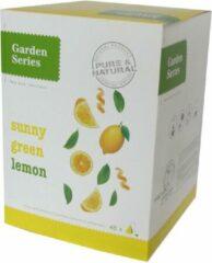 Groene Thee - Sunny groen Lemon - Garden Series Box (48 piramidebuiltjes)