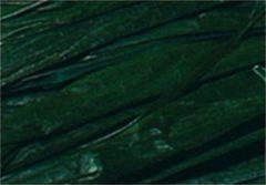 Raffia Folia bundel 50 gram dennengroen