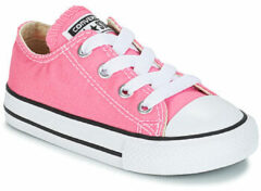 Roze Lage Sneakers Converse CHUCK TAYLOR ALL STAR CORE OX