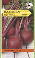 Oranjeband Zaden Oranjeband - Rode Biet Kogel 2 Bolivar