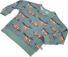 Tinymoon Unisex Sweater – model batwing – Lazy Luiaard – Dusty Mint – Maat 98/104