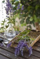 Lavendel Bloemen water 100 ml | Lavender Hydrolaat | 100% Puur | Biologisch | Roomspray | Bodyspray | Gezichtstonic | Gezichtsreiniging tonic | Huidverzorging | Pure Naturals