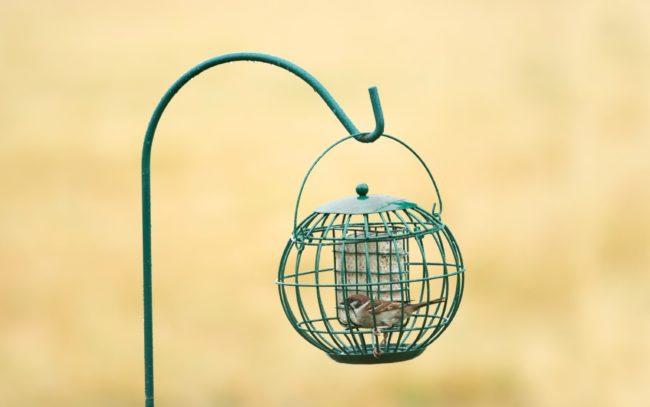 Afbeelding van Wildbird Vetblokhouder London - Voersilo - 22x22x21 cm Groen