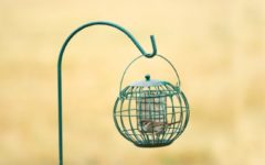 Groene Wildbird Vetblokhouder London 22x22x21 cm Groen