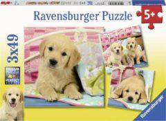 Ravensburger puzzel Schattige hondjes - Drie puzzels - 49 stukjes - kinderpuzzel