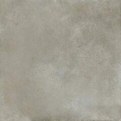 Herberia Timeless Silver 60x60 Rett vloertegel