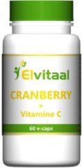 Elvitaal Cranberry + 60 mg vitamine c 60 Stuks