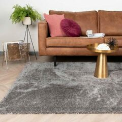 Fraai Hoogpolig vloerkleed - Glazy licht grijs 160x230cm