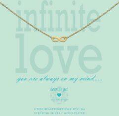 Goudkleurige Heart to Get - Ketting met hanger - Goud - Infinity