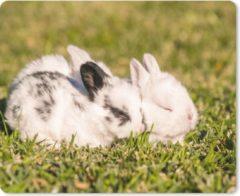 MousePadParadise Muismat Baby konijnen - Drie baby konijnen in een veld muismat rubber - 23x19 cm - Muismat met foto