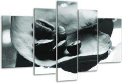 GroepArt Glas schilderij Koffiebonen, Keuken | Grijs, Groen | 170x100cm 5Luik | Foto print op Glas | F006683